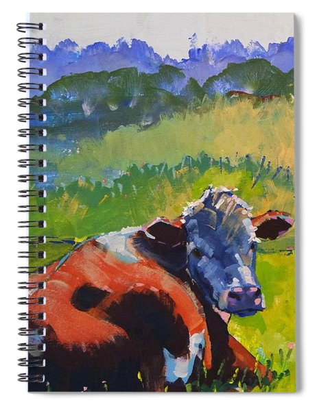 Cow Lying Down On A Sunny Day Spiral Notebook