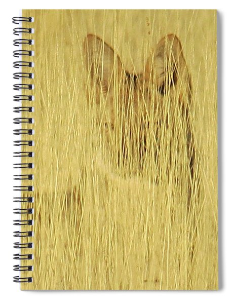 Coyote 1 Spiral Notebook