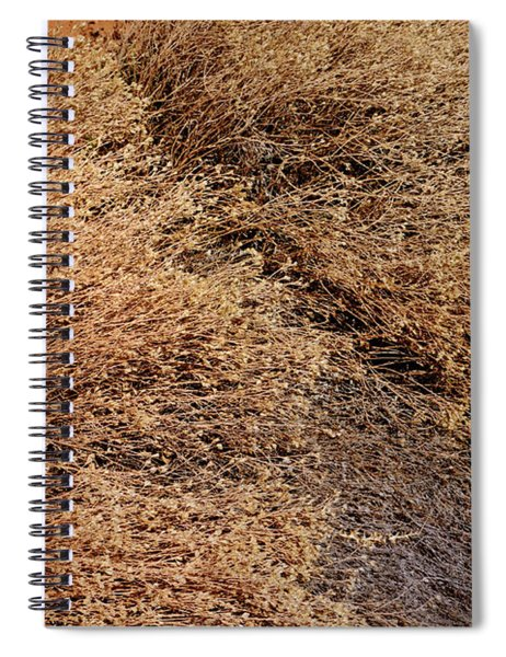 Coyote Brush Spiral Notebook