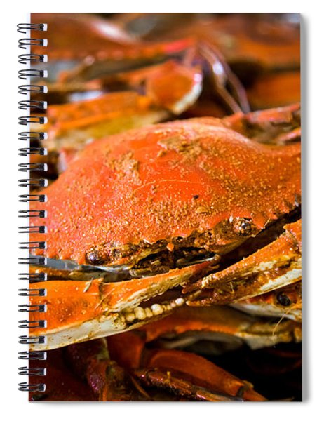 Crab Boil Spiral Notebook
