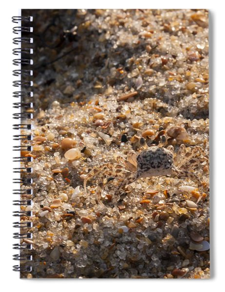 Crab Camoflage Spiral Notebook