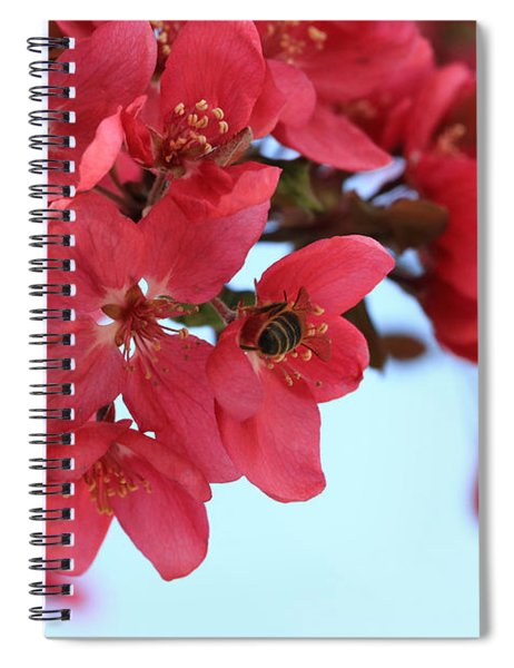 Crabapple Bees Spiral Notebook