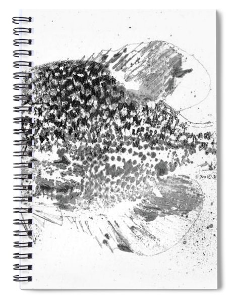 Crappie Abstract Spiral Notebook