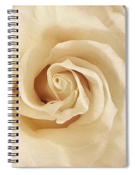 Creamy Rose Spiral Notebook