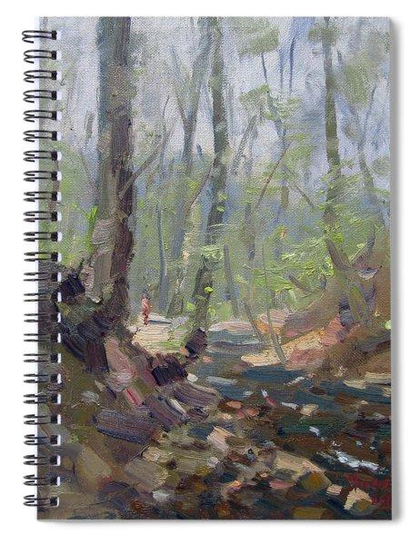 Creek At Lockport Natural Trail Spiral Notebook