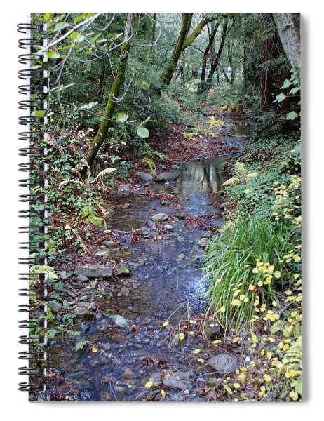Creek On Mt Tamalpais 2 Spiral Notebook