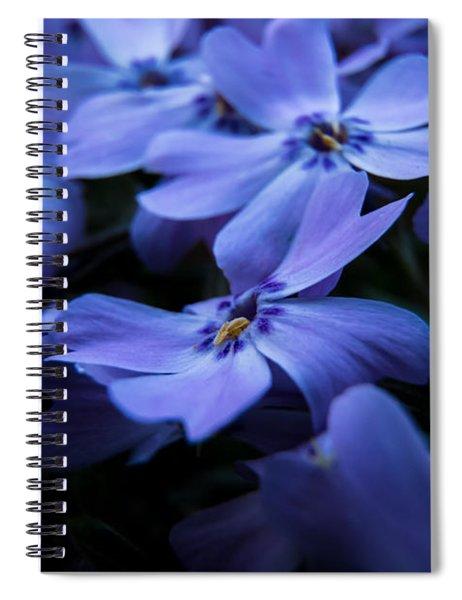 Creeping Phlox Spiral Notebook