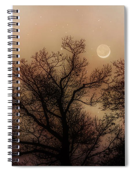 Crescent Between The Trees Spiral Notebook