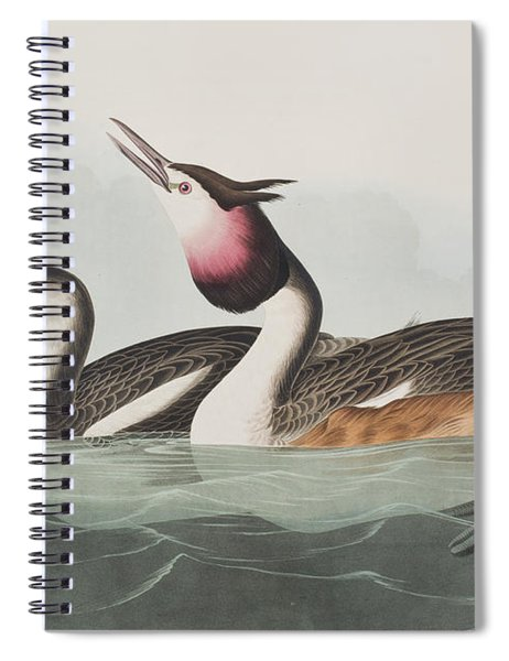 Crested Grebe Spiral Notebook