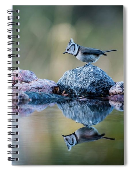 Crested Tit's Reflection Spiral Notebook