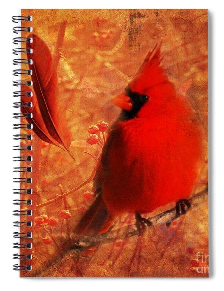 Crimson Splash 2015 Spiral Notebook