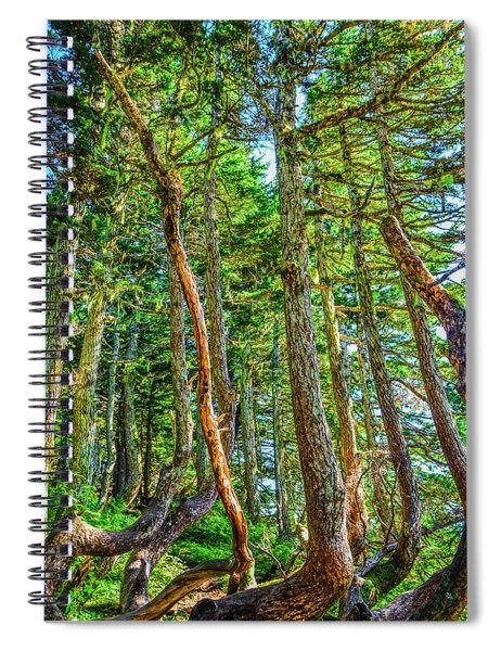 Crooked Trees Of Mt Roberts Spiral Notebook