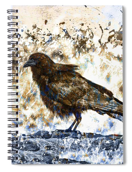 Crow On Blue Rocks Spiral Notebook