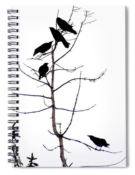 Crows In A Tree Spiral Notebook