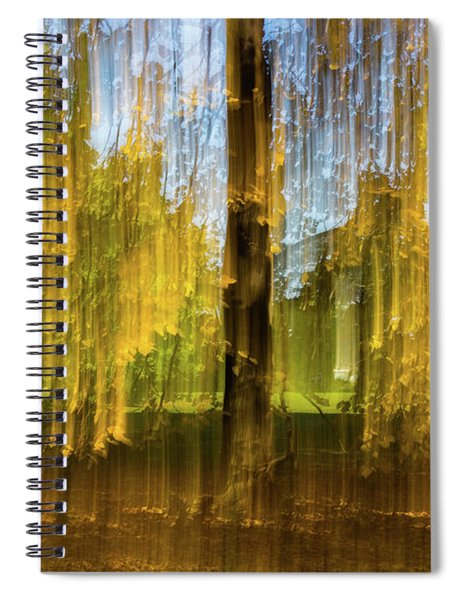 Crying Spiral Notebook