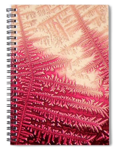 Crystal Of Ammonium Chloride Spiral Notebook