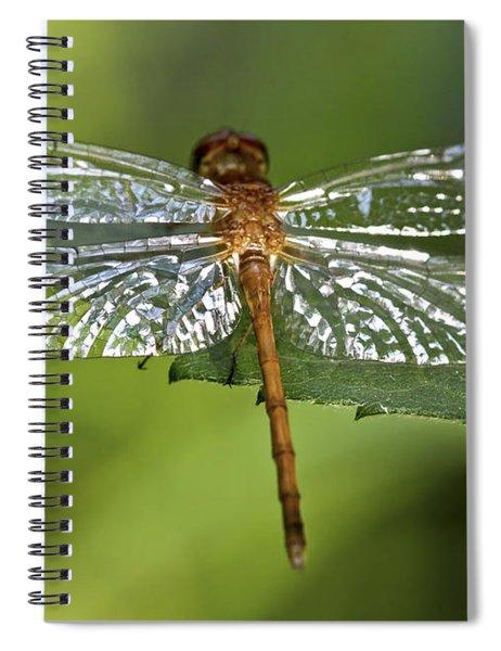 Crystal Wings Spiral Notebook