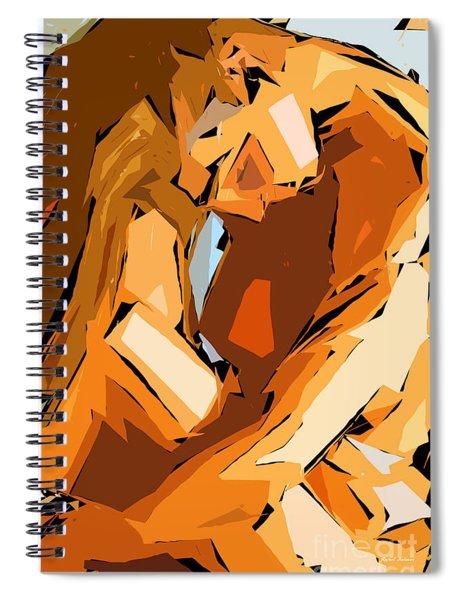 Cubism Series Ix Spiral Notebook
