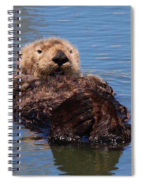 Cuddle Bunches  Spiral Notebook