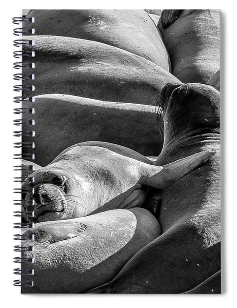 Cuddle Puddle Spiral Notebook