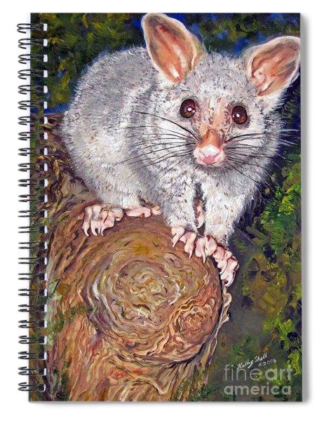 Curious Possum  Spiral Notebook