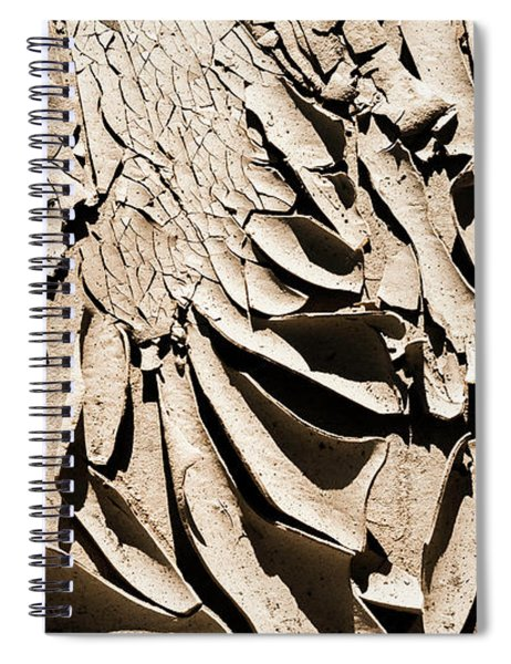 Curled Up Spiral Notebook