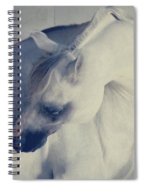 Curves Spiral Notebook