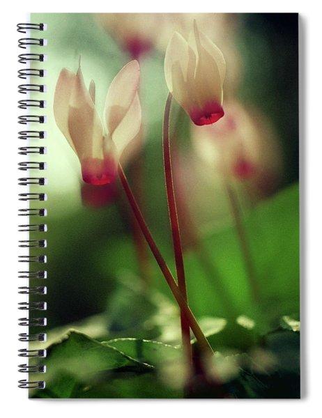 Cyclamens Spiral Notebook