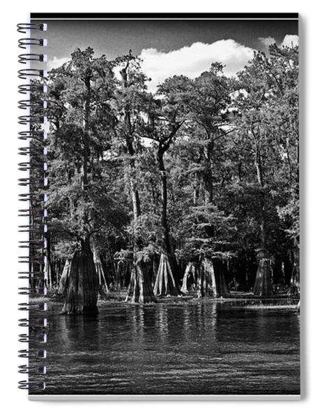 Cypress On The Suwannee Spiral Notebook