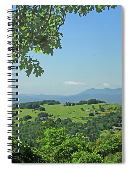 D7b6319 Oak Trees Frame Sf Bar Area View Ca Spiral Notebook