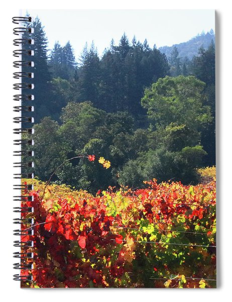 D8b6309 Fall Colors In Jack London Vineyard Spiral Notebook