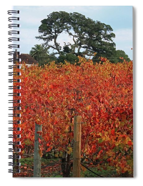 D8b6310 Jack London Vineyard Spiral Notebook