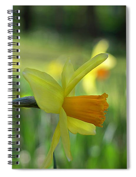 Daffodil Side Profile Spiral Notebook