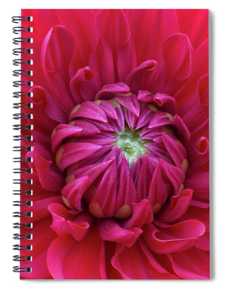 Dahlia Heart Spiral Notebook