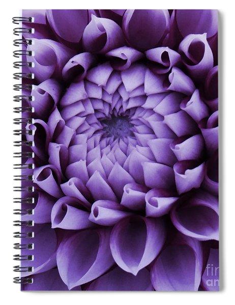 Dahlia Macro In Lavender Spiral Notebook