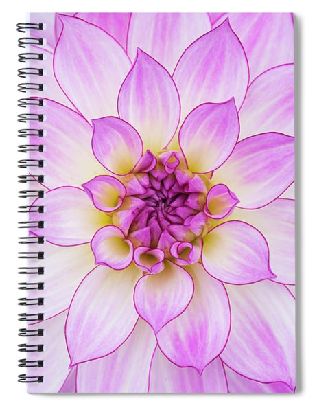 Dahlia Oriental Dream Spiral Notebook