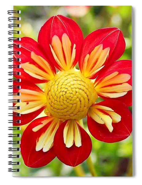 Dainty Dahlia Spiral Notebook