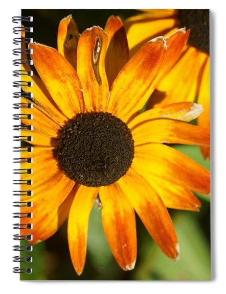 Daisy 8 Spiral Notebook