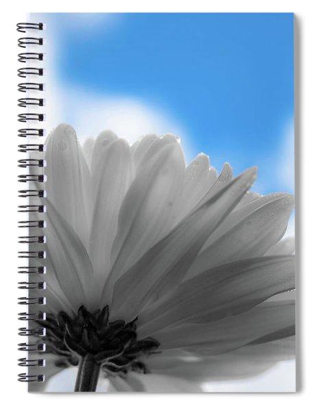 Daisy Blue Spiral Notebook