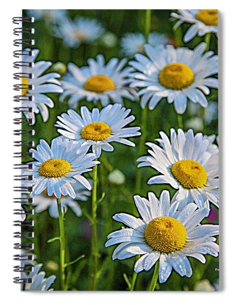 Daisy Dew Spiral Notebook