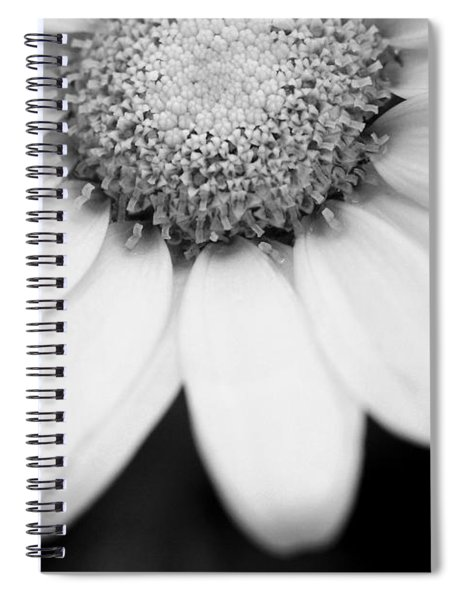 Daisy Smile - Black And White Spiral Notebook