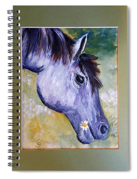 Daisy The Old Mare     52 Spiral Notebook