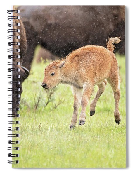 Dance In The Rain Spiral Notebook