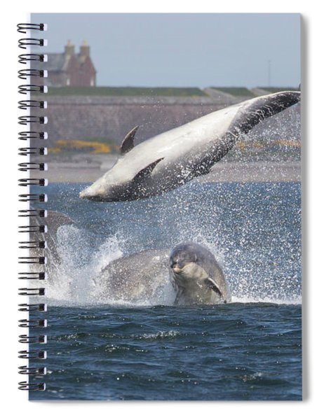 Dance Of The Dolphins Spiral Notebook
