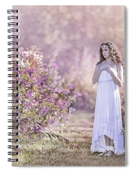 Dance Of The Sugar Plum Fairy Spiral Notebook