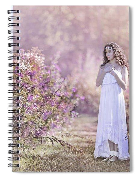 Dance Of The Sugar Plum Fairy Spiral Notebook