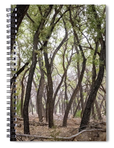 Dance Of The Trees Spiral Notebook