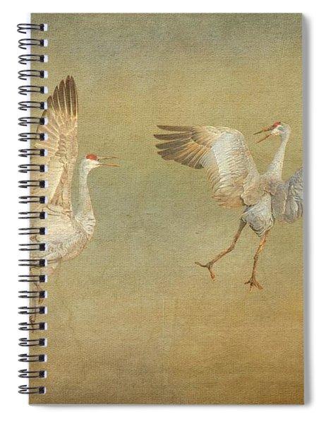 Dance Ritual II, Sandhill Cranes Spiral Notebook