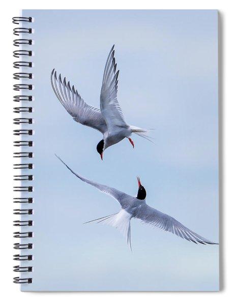 Dancing Arctic Terns Spiral Notebook