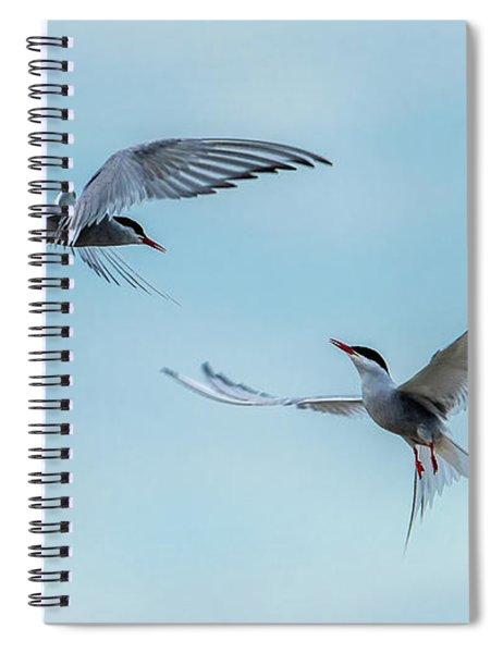Dancing Terns Spiral Notebook